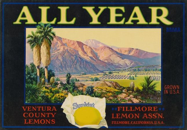 LemonLA